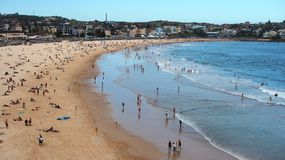 Bondi Beach, Late Afternoon Royalty Free Stock Images