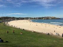 Bondi Beach ocean scene withbathers. Beach, ocean, seaside, waves swimmers sand water waves sunny pathway grass holidaymakers tourism Royalty Free Stock Photos