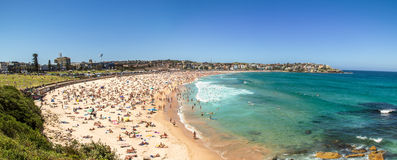 Bondi Beach Panorama Royalty Free Stock Photo