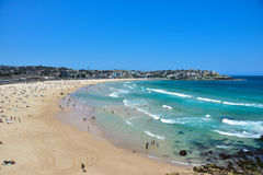 Bondi beach in summer Stock Photos