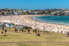 Bondi Beach - Summer Crowds Royalty Free Stock Photos