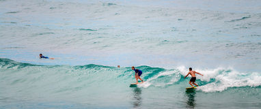Free Bondi Beach Surfers Royalty Free Stock Images - 62578229