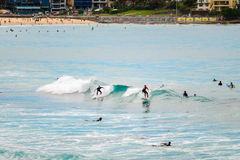 Bondi Beach surfers Stock Images