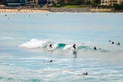 Bondi Beach surfers Stock Images