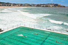 Bondi Beach and Swimming Pool Stock Photography