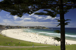 Bondi Beach - Sydney - Australia. Bondi Beach near Sydney in Australia Stock Photo