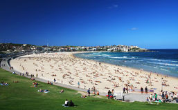 Bondi Beach in Sydney, Australia Stock Image