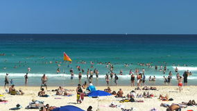 Bondi Beach in Sydney stock video