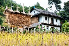 Bondon - le counryside du Népal Photographie stock