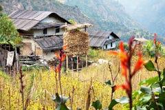 Bondon - le counryside du Népal image stock