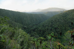 Bonduif trail Stock Photo