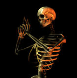 Bone 9. This is an skeleton in a thoughtful pose Stock Images