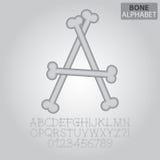 Bone Alphabet and Numbers Vector. Set of Bone Alphabet and Numbers Vector Stock Illustration