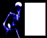 Bone Blank Sign. An x ray image of a Skelton in a pose a suitable image for medical or Halloween based concepts. It also contains a blank white area which you Stock Photos