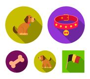 Bone, collar, sit, food.Dog set collection icons in flat style vector symbol stock illustration web. Bone, collar, sit, food.Dog set collection icons in flat Royalty Free Stock Photos