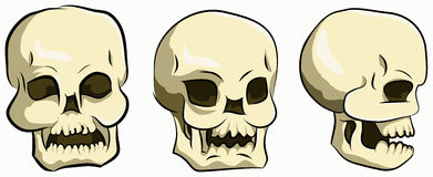 Bone head set. Illustration skull or bone head from 3 angle Royalty Free Stock Photography