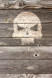 Bone head on wooden background Stock Images
