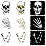 Bone illustrations Royalty Free Stock Photos