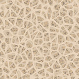 Bone inside structure seamless pattern. EPS 10. Bone inside structure seamless pattern. And also includes EPS 10 vector Stock Images