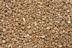 Bone meal royalty free stock image