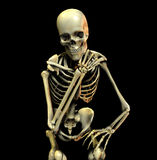 Bone Pose 20. This is an skeleton in a thoughtful pose Royalty Free Stock Photo