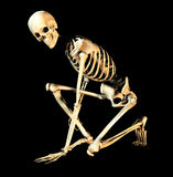 Bone Pose 5. This is an skeleton in a  pose Stock Photo