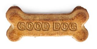 Good Dog Reward Biscuit. Bone-shaped dog biscuit with `Good Dog` words imprinted stock photography