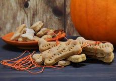 Bone shaped homemade pumpkin dogs cookies. Homemade bone shaped pumpkin dog cookies being wrapped in orange twine. Pumpkin in background stock photos