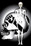 Bone skull fire eagle Royalty Free Stock Images