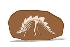 Bone of Stegosauras in clay fossil, vector vector illustration
