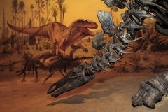 Bone Story. Drumheller, Canada - Mar 27 2016: Visitors flock to the dinosaur exhibits at the entrance of the Royal Tyrrell Museum . The museum is famous for its Royalty Free Stock Photography