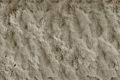 Bone texture macrophotography photo porous material for background stock illustration