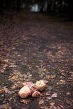 Boneca Foto de Stock