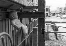 Boneca abandonada Foto de Stock Royalty Free