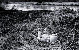 Boneca assustador abandonada na grama perto do rio Imagens de Stock