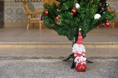 Boneca bonita de Papai Noel ao lado da árvore de Natal Imagens de Stock Royalty Free