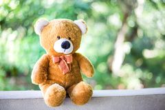 Boneca do urso de peluche com fundo verde da natureza Imagens de Stock