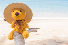 Boneca e mar do urso Foto de Stock