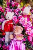 Bonecas bonitas do urso Fotos de Stock Royalty Free