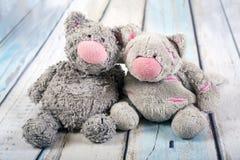 Bonecas bonitos dos gatos Foto de Stock