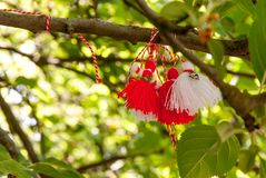Bonecas de Martenitsa que penduram árvore babá Marta dia no símbolo da celebração do 1º de março imagens de stock royalty free