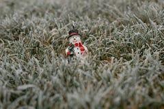 Boneco de neve Fotos de Stock