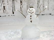 Boneco de neve amigável Imagens de Stock