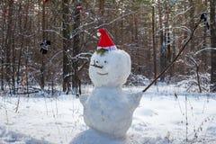 Boneco de neve do ano novo Fotos de Stock Royalty Free