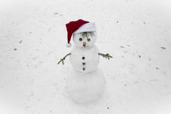 Boneco de neve engraçado na neve Imagens de Stock Royalty Free