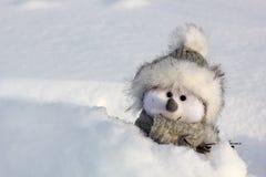 Boneco de neve feliz Fotografia de Stock Royalty Free