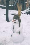Boneco de neve na jarda Imagem de Stock