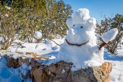 Boneco de neve no Arizona Mountians imagem de stock