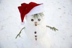 Boneco de neve pequeno encantador com suas mãos dos galhos do pinho no re Fotos de Stock