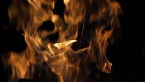 Bonefire, Fire flames in campfire, campsite at Masai Mara Park, Kenya. Slow motion stock video
